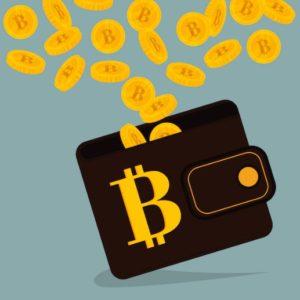 ビットコインを保管するウォレット(watllet)とは